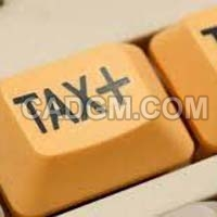 Taxation Laws Services