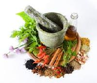 Medicinal Plant Extracts