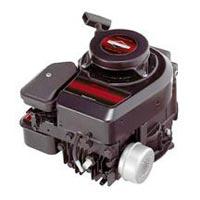 Briggs & Stratton Engine -03