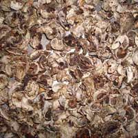 Dry Amla (02)