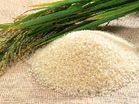 Basmati Rice - 01