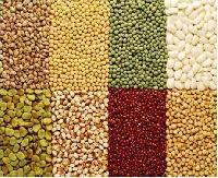 Cereals Food Grains