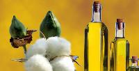 Edible Cottonseed Oil