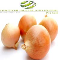onion supplier
