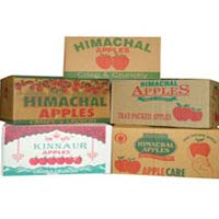Corrugated Paper Fruit Boxes