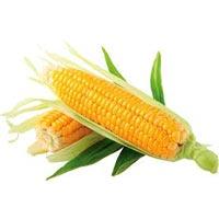 Yellow Whole Maize