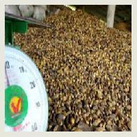 Betel Nuts ( Areca Nuts)