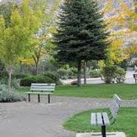Park Landscape Development