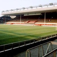 Stadium Landscape Development