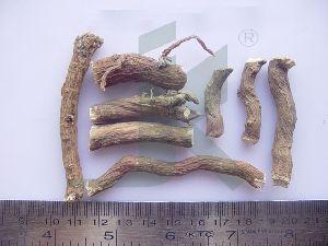 Boerhaavia diffusa (Punarnava)