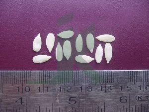 Cucumis Melo (muskmelon Seeds)