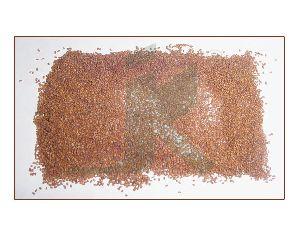 SISYMBRIUM IRIO (rocket seeds)