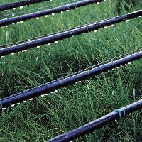 Iron Drip Irrigation System