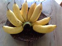 Fresh Rastali Banana
