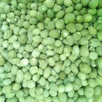 Dry Nutmeg Seeds