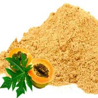 Dehydrated Papaya Powder