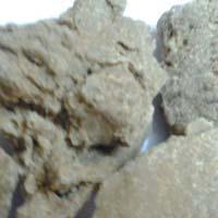 High Quality Moringa Seed Oil Cake Exporters