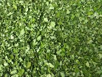 Natural Moringa Leaves