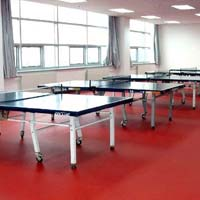 Table Tennis Wooden Floorings