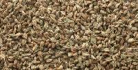 Carrom Seeds