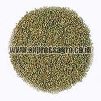 B Grade Millet Seeds
