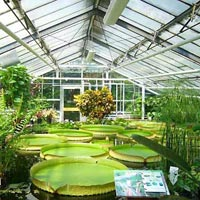 Green House Installation Services