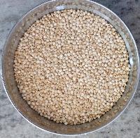 Milky White Quinoa Seeds