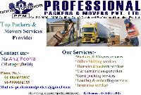 professional packers Movers Services