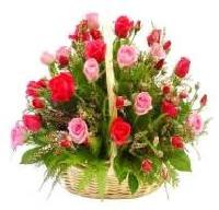Rose Flowers Basket