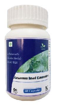 Hawaiian Herbal Anamu Leaf Capsule