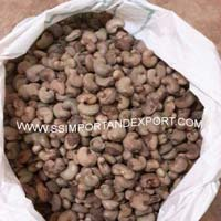 imported raw cashew nuts