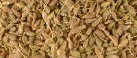 Aniseed Oil, Pimpinella Anisum