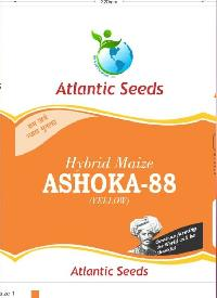 Ashoka-88 Hybrid Yellow Maize Seeds