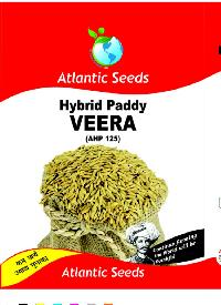 Veera Hybrid Paddy Seeds