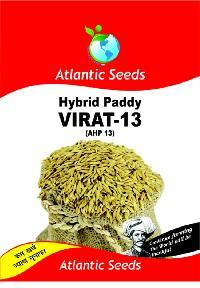 Virat-13 Hybrid Paddy Seeds