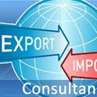 Export Import Consultants