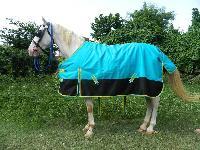 VE-R-006 Horse Rug