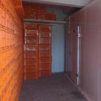 Ripening Chamber Renting Services