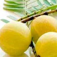 Fresh Indian Gooseberry