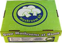 Grow You Own Mushroom