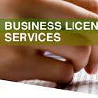 Business License Registration Services