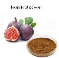 Ficus Fruit Powder