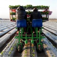 High quality seeding transplanter with CE for sale