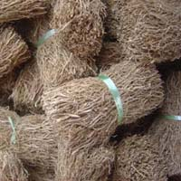 Vetiver Root