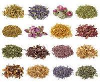 Herbal Raw Material