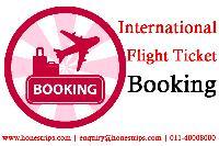 cheap domestic travel services