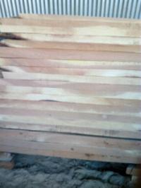 Neem Babool Wood