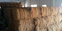 Brown Coir Fibre