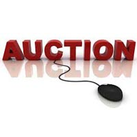 E Auctions Services On Sellxg.com