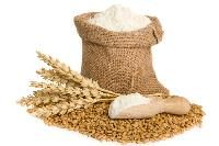 Wheat Flour